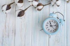 Bei fiori bianchi del cotone e sveglia blu sul fondo di legno del turchese, casa Fotografie Stock Libere da Diritti