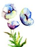 Bei fiori blu Fotografie Stock