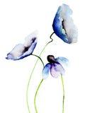 Bei fiori blu Fotografia Stock Libera da Diritti