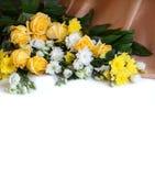 Bei fiori con fondo bianco per testo Fotografia Stock