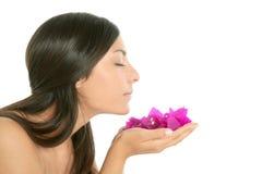 Bei fiori del bougainvillea e dell'indiano Fotografia Stock Libera da Diritti