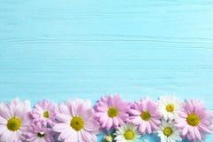 Bei fiori della camomilla su fondo di legno fotografia stock