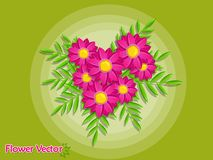 Bei fiori della primavera sul fondo di colore Estate e decorat Immagine Stock Libera da Diritti