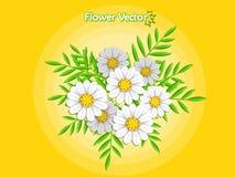 Bei fiori della primavera sul fondo di colore Estate e decorat Fotografie Stock Libere da Diritti