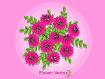 Bei fiori della primavera sul fondo di colore Estate e decorat Fotografia Stock