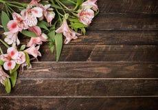 Bei fiori di Alstroemeria su fondo di legno scuro Fotografia Stock