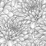 Bei fiori e foglie in bianco e nero monocromatici illustrazione vettoriale