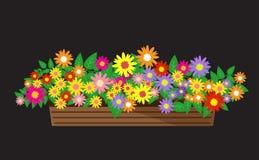 Bei fiori, fiori Fotografia Stock