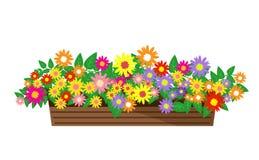 Bei fiori, fiori Fotografie Stock