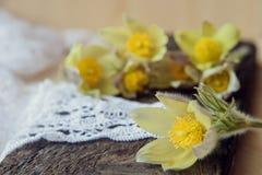 Bei fiori 8 marzo carta del giorno delle donne Bucaneve del mazzo su fondo di legno Immagini Stock Libere da Diritti