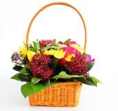 Bei fiori nel canestro del awicker su fondo leggero Immagini Stock