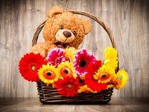 Bei fiori nel canestro ed in un orsacchiotto Immagini Stock Libere da Diritti