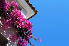Bei fiori rosa al balcone dell'hotel Immagine Stock