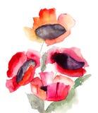 Bei fiori rossi Fotografie Stock Libere da Diritti