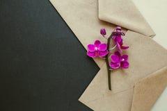Bei fiori in una busta postale fotografia stock libera da diritti