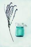 Bei fiori viola Ancora vita 1 Mazzo dei fiori selvaggi in un vaso di vetro Fiori piacevoli nelle bottiglie Tabella decorata con Fotografia Stock Libera da Diritti