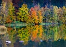 Bei foglie e paesaggio di autunno fotografia stock libera da diritti