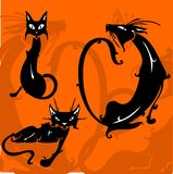 Bei gatti. Immagini Stock Libere da Diritti