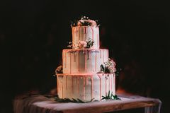 Bei grandi tre strati eleganti della torta nunziale bianca