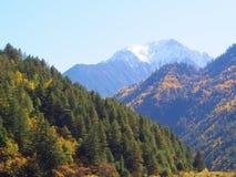 Bei lago e montagna Jiuzhaigou Natura riservata Nationa Immagine Stock