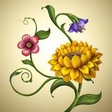 Bei molla e fondo d'annata dei fiori di estate Immagini Stock Libere da Diritti
