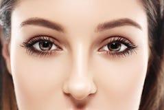 Bei occhi della donna e studio del naso su fondo bianco Immagine Stock