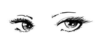 Bei occhi femminili Fotografia Stock Libera da Diritti
