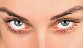 Bei occhi femminili Fotografie Stock