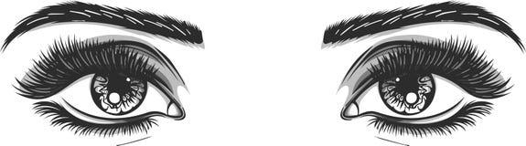 Bei occhi femminili in bianco e nero isolati messi - aperto e chiuso Illustrazione in bianco di vettore del modello di trucco illustrazione vettoriale