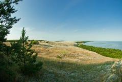 Bei paesaggio, dune, legno e mare Immagini Stock