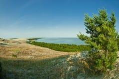 Bei paesaggio, dune, legno e mare Immagine Stock Libera da Diritti