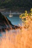Bei paesaggio e tropicale sopra il mare blu con l'yacht o la barca a vela nell'erba gialla della sfuocatura e del fondo nel foreg Immagini Stock Libere da Diritti