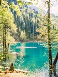Bei paesaggio, lago della montagna e montagne con gli alberi Immagine Stock Libera da Diritti