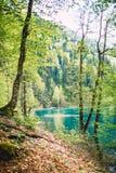 Bei paesaggio, lago della montagna e montagne con la foresta Immagine Stock