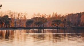 Bei paesaggio, uccelli e tramonto del lago Onde, linea di orizzonte ed alberi rosa dorati su acqua fotografie stock libere da diritti