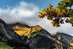 Bei pendii di alte alpi sul sole, concetto ambientale Immagini Stock