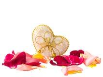 Bei petali rosa e contenitore di regalo su un fondo bianco Fotografia Stock Libera da Diritti