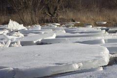 Bei pezzi del ghiaccio Fotografie Stock