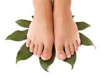 Bei piedini della donna in stazione termale Fotografia Stock Libera da Diritti