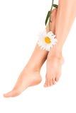 Bei piedini femminili con il fiore immagine stock