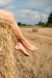 Bei piedini su paglia sul campo Fotografia Stock