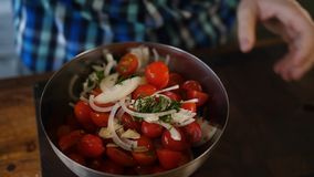 Bei pomodori freschi Cherry Tomatoes immagine stock libera da diritti