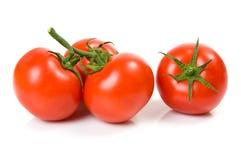 Bei pomodori isolati sul bianco Fotografia Stock