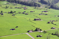 Bei prati nelle alpi svizzere Immagine Stock Libera da Diritti