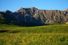Bei prato e montagne verdi nel Tirolo del sud Fotografie Stock