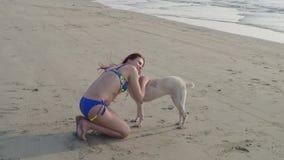 Bei ragazza e cane dal mare video d archivio