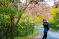 Bei ragazza e fiori asiatici del sud Immagine Stock