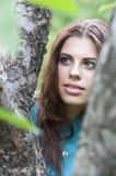 Bei ragazza ed albero Fotografia Stock Libera da Diritti