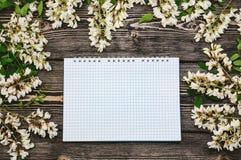 Bei rami e blocco note del fiore dell'acacia della molla Fotografia Stock