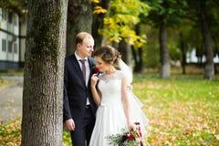 Bei sposa e sposo nel parco un giorno soleggiato Fotografia Stock Libera da Diritti